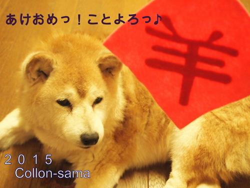 あけおめ2015collon.JPG