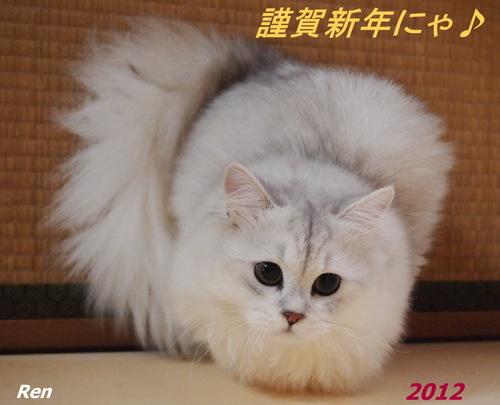 ren20120101.jpg